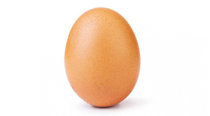 Why the Egg Matters